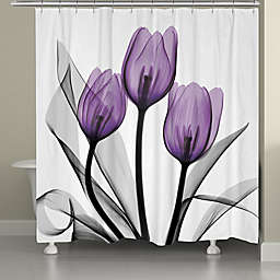 Laural Home X-Ray Violet Flowers Shower Curtain