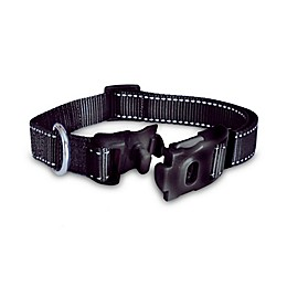 ThunderCollar® Pet Collar in Black with Tag Silencer