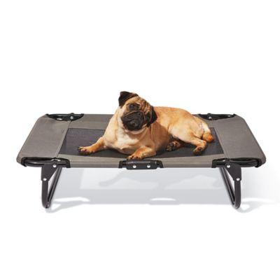 Dog Beds | Bed Bath \u0026 Beyond
