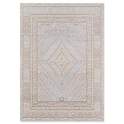 Momeni Isabella Medallion 9'3 x 11'10 Area Rug in Grey
