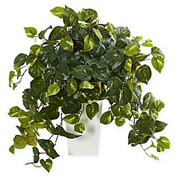 Nearly Natural Pothos Artificial Plant Collection