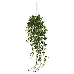 Nearly Natural 40-Inch Pothos Artificial Plant in White Basket