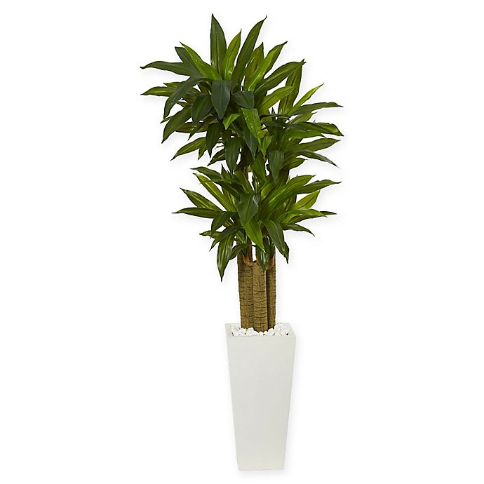 Nearly Natural Cornstalk Dracaena Artificial Plant In White Vase Bed Bath Beyond