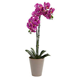 Nearly Natural 24-Inch Orchid Artificial Arrangement in Purple
