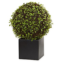 Nearly Natural 13-Inch Mohlenbechia Ball Artificial Plant with Black Planter
