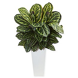 Nearly Natural Maranta Artificial Plant with White Vase