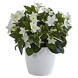 Nearly Natural 10-Inch Stephanotis with Planter in White