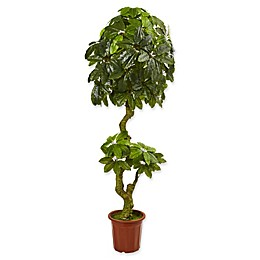 Nearly Natural 26-Inch Schefflera Artificial Tree in Green
