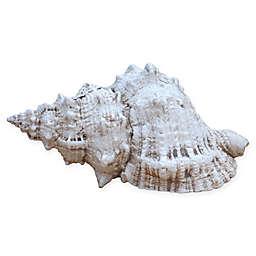 Bursa Wedding Shell in Museum White