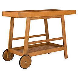 Safavieh Renzo Indoor/Outdoor Bar Cart