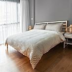 Designs Direct Ombre Dots Queen Duvet Cover in Grey