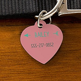 Dog ID Tag Collection