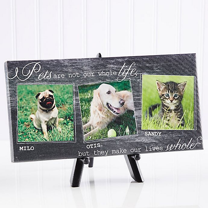 Alternate image 1 for My Pets 5.5-Inch x 11-Inch Canvas Wall Art