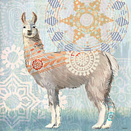 Portfolio Arts Group Global Llama II 12-Inch Square Canvas Wall Art