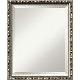 Amanti Art Parisian Silver 18-Inch x 22-Inch Mirror in Nickel/Silver