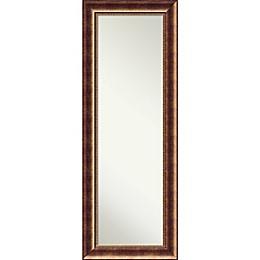 Amanti Art Manhattan 19-Inch x 53-Inch Framed On the Door Mirror in Bronze
