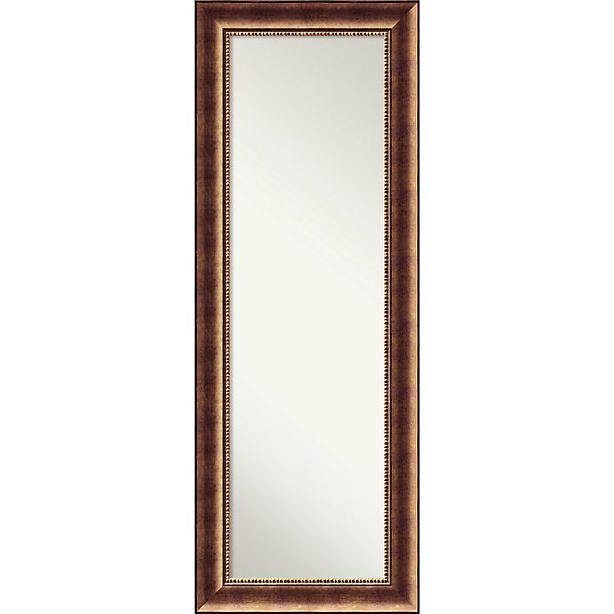 Alternate image 1 for Amanti Art Manhattan 19-Inch x 53-Inch Framed On the Door Mirror in Bronze
