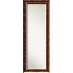 Amanti Art Manhattan 19-Inch x 53-Inch Framed On the Door Mirror in Bronze