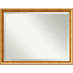 Amanti Art Townhouse 44-Inch x 34-Inch Framed Wall Mirror in Gold