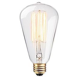 Globe Electric Vintage Edison 60-Watt S-Type Bulb