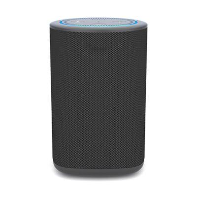 Vaux Carbon Portable Speaker + Battery for Amazon Echo Dot in Black