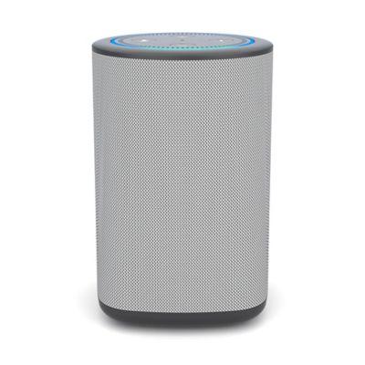 Vaux Carbon Portable Speaker + Battery for Amazon Echo Dot in Grey