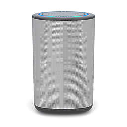Vaux Carbon Portable Speaker + Battery for Amazon Echo Dot