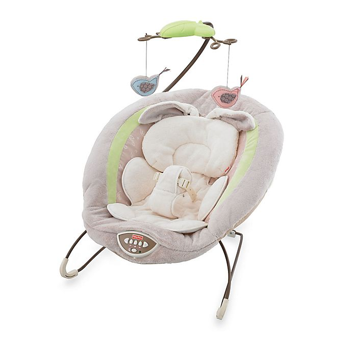 Alternate image 1 for My Little Snugabunny Bouncer by Fisher-Price®