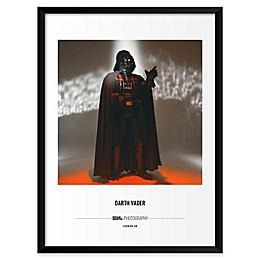 Brian Griffin's Star Wars™ Darth Vader 19-Inch x 25-Inch Wall Art