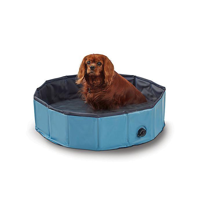 Alternate image 1 for Pawslife™ Pop-Up Dog Pool in Blue