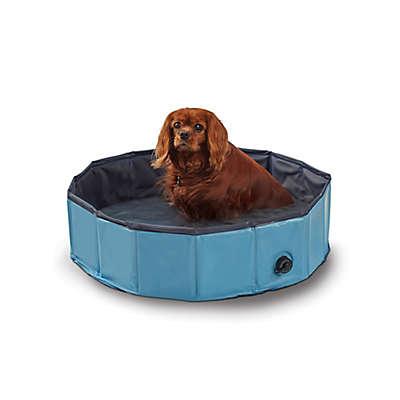 Pawslife™ Pop-Up Dog Pool in Blue