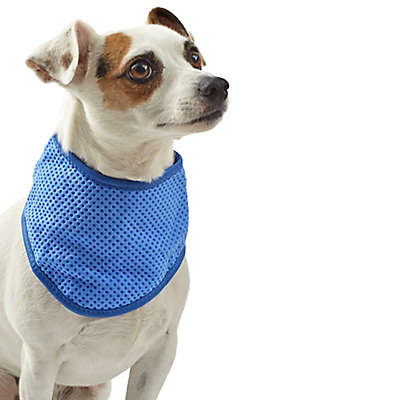 Pawslife™ Cooling Bandana in Blue