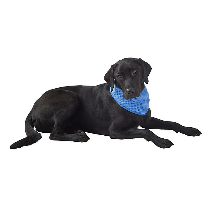 Alternate image 1 for Pawslife® Cooling Bandana in Blue