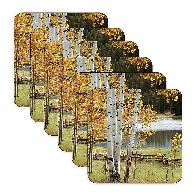 Alternate image 1 for Pimpernel Birch Beauty Coasters (Set of 6)