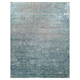 Amer Synergy Transitional Rug