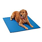 Pawslife™ X-Large Cool Pad in Blue