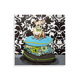Chihuahua on Pillows I Wall Art