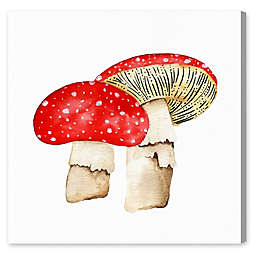 Oliver Gal Home Mushrooms 12-Inch x 12-Inch Canvas Wall Art in White