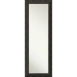 Signore On The Door Mirror in Bronze