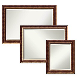 Amanti Art Manhattan Bathroom Mirror