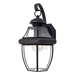 Quoizel®  Medici Bronze Newbury Medium Outdoor Wall Lantern