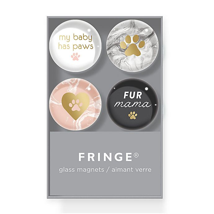 Alternate image 1 for Fringe Studio™ Glass Magnets (Set of 4)