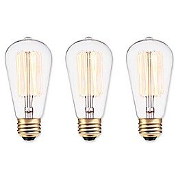 Globe Electric Vintage Edison Light Bulbs