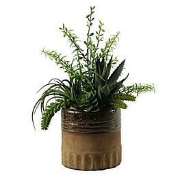 D&W Silks Aloe, Tillandsia and Echeveria in Brown Ceramic Planter