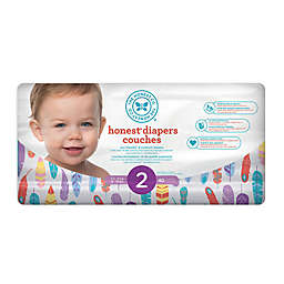 Honest 40-Count Size 2 Diapers in Painted Feathers Pattern