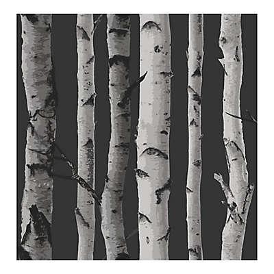 Fine Decor Distinctive Birch Tree Wallpaper in Black