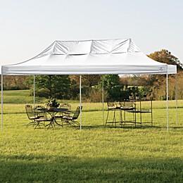 ShelterLogic® Pro Series 10-Foot x 20-Foot Canopy