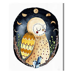 Oliver Gal Sleeping Owl 20-Inch x 17-Inch Canvas Wall Art