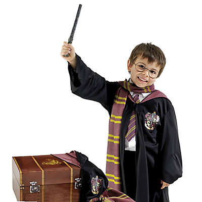 Harry Potter Toddler's Dress Up Halloween Trunk 6-Piece Set