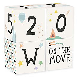 Milestone™ Baby Blocks (Set of 4)